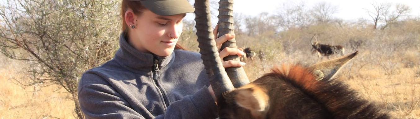 CONSERVATION: Veterinary, Wildlife Game Capture and Conservation, in Limpopo in South Africa